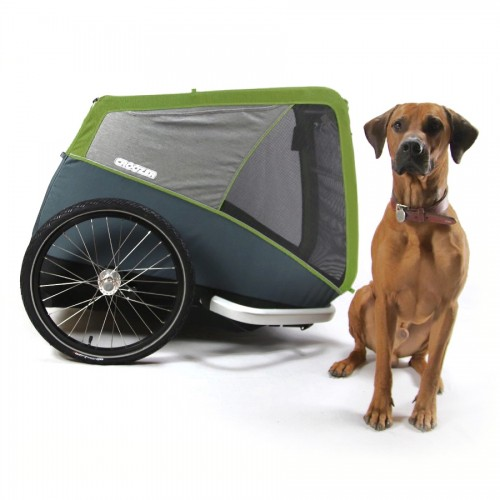 CROOZER DOG Jokke XL 2019, zelený