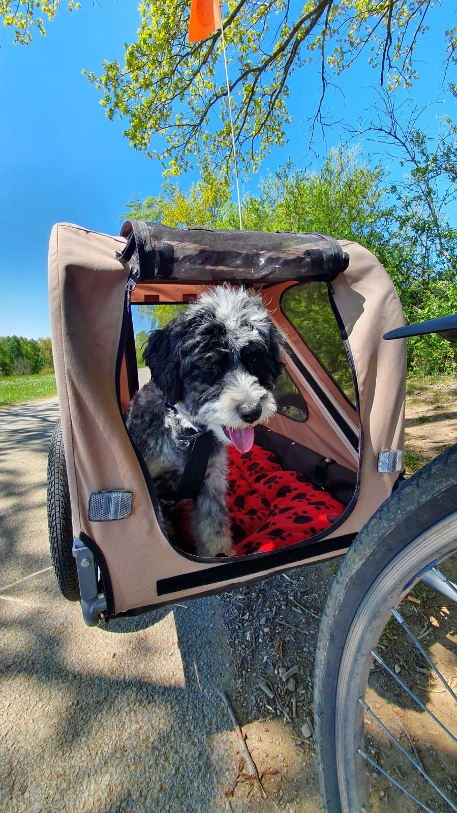 Vozík za kolo pro psa XLC by Croozer