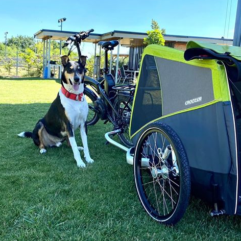 Pesopark - odpruzeny vozík za kolo Croozer